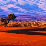 frika-destinacija-putovanja-pustinja-Kairo-Egipat-AS-travel