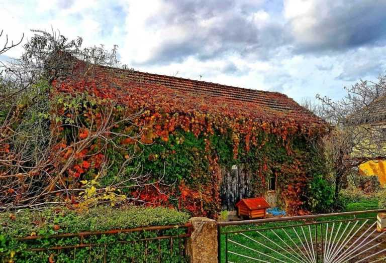 Jesen-u-Banjaluci